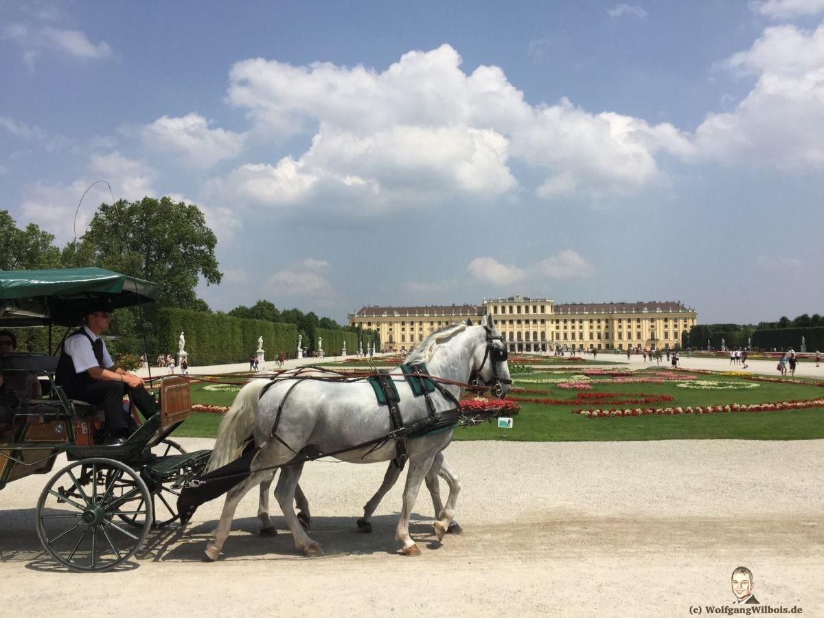 Wien Schloss Schoenbrunn Pferdekutsche