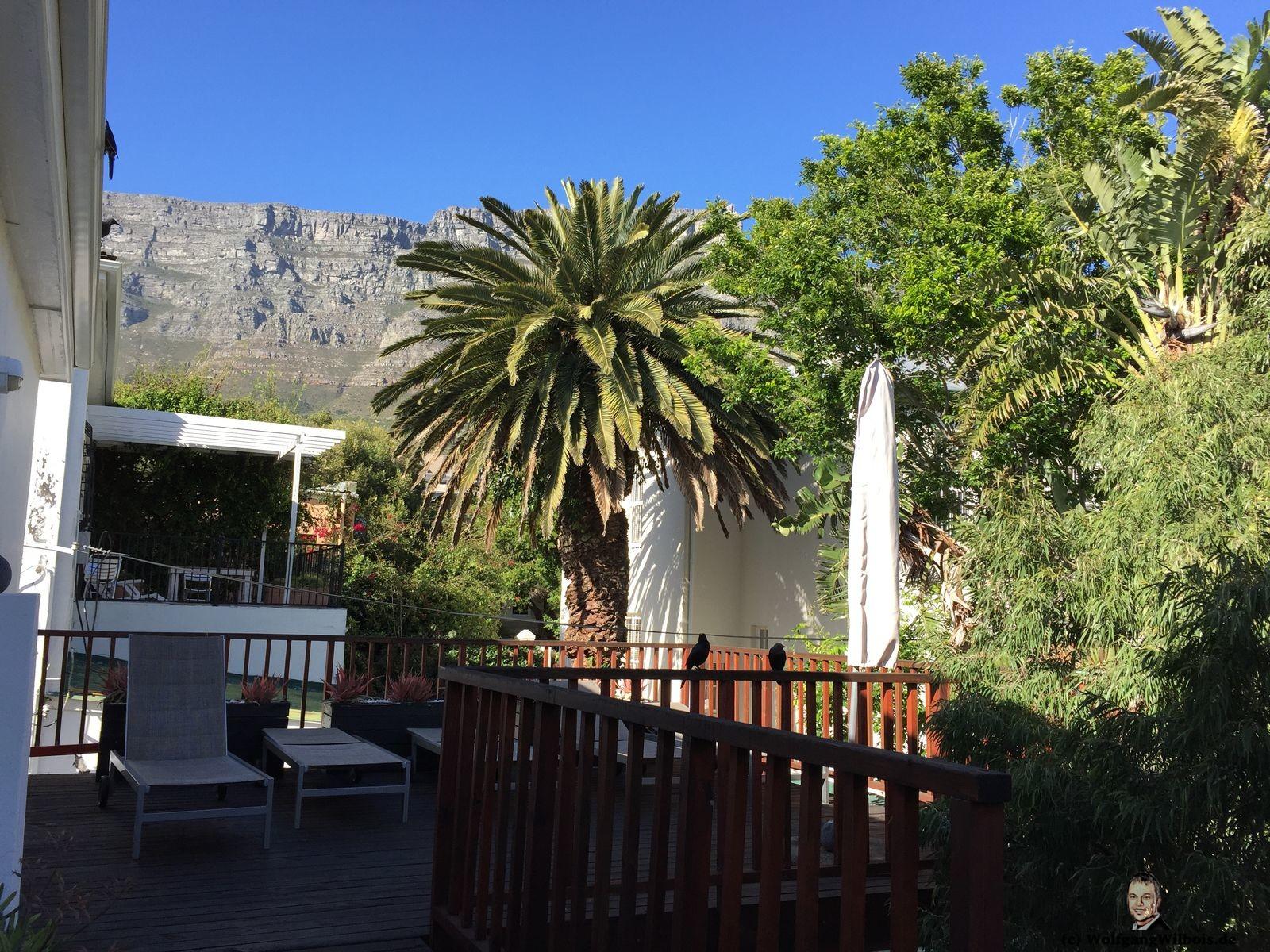 Cactusberry Lodge Kapstadt Capetown Dachterrasse Tafelberg