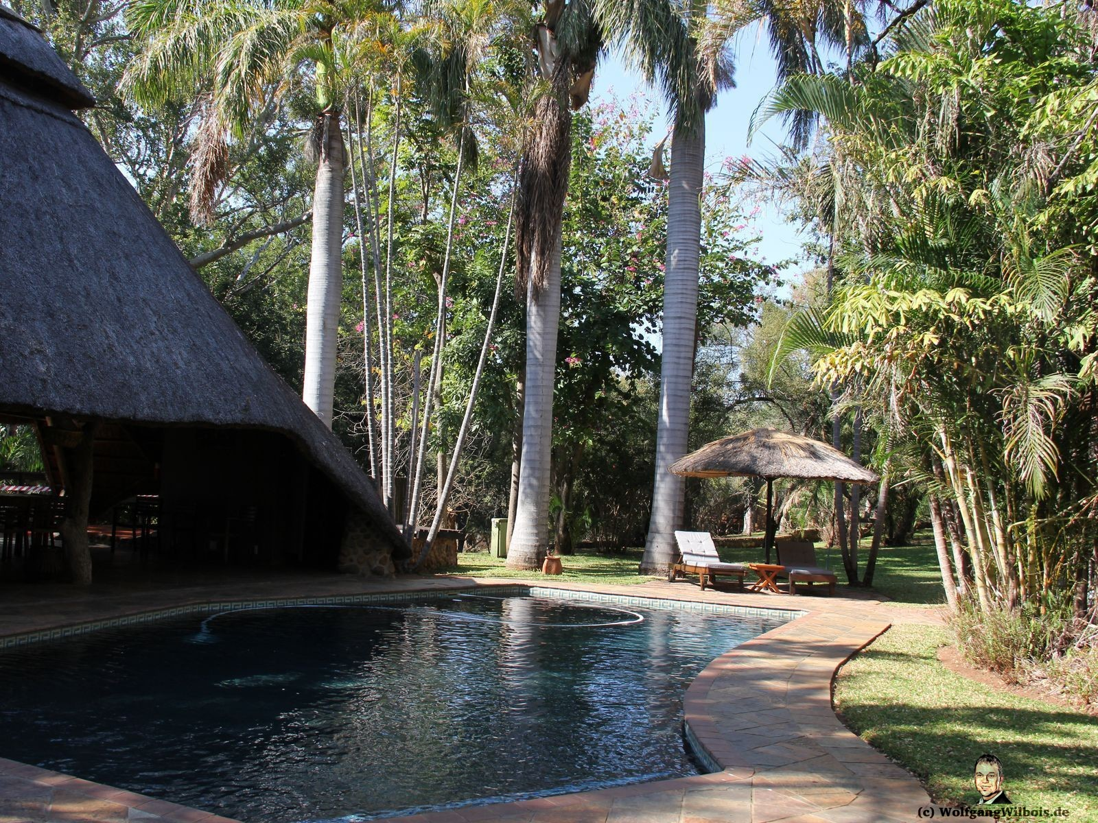 Blyde River Wilderness Lodge Hoedspruit Pool