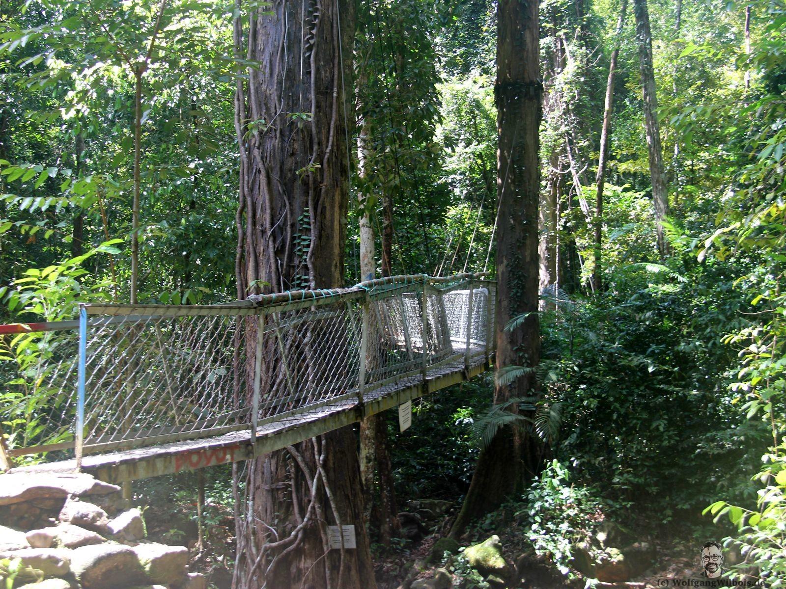 Backpacking Borneo Santubong Nationalpark