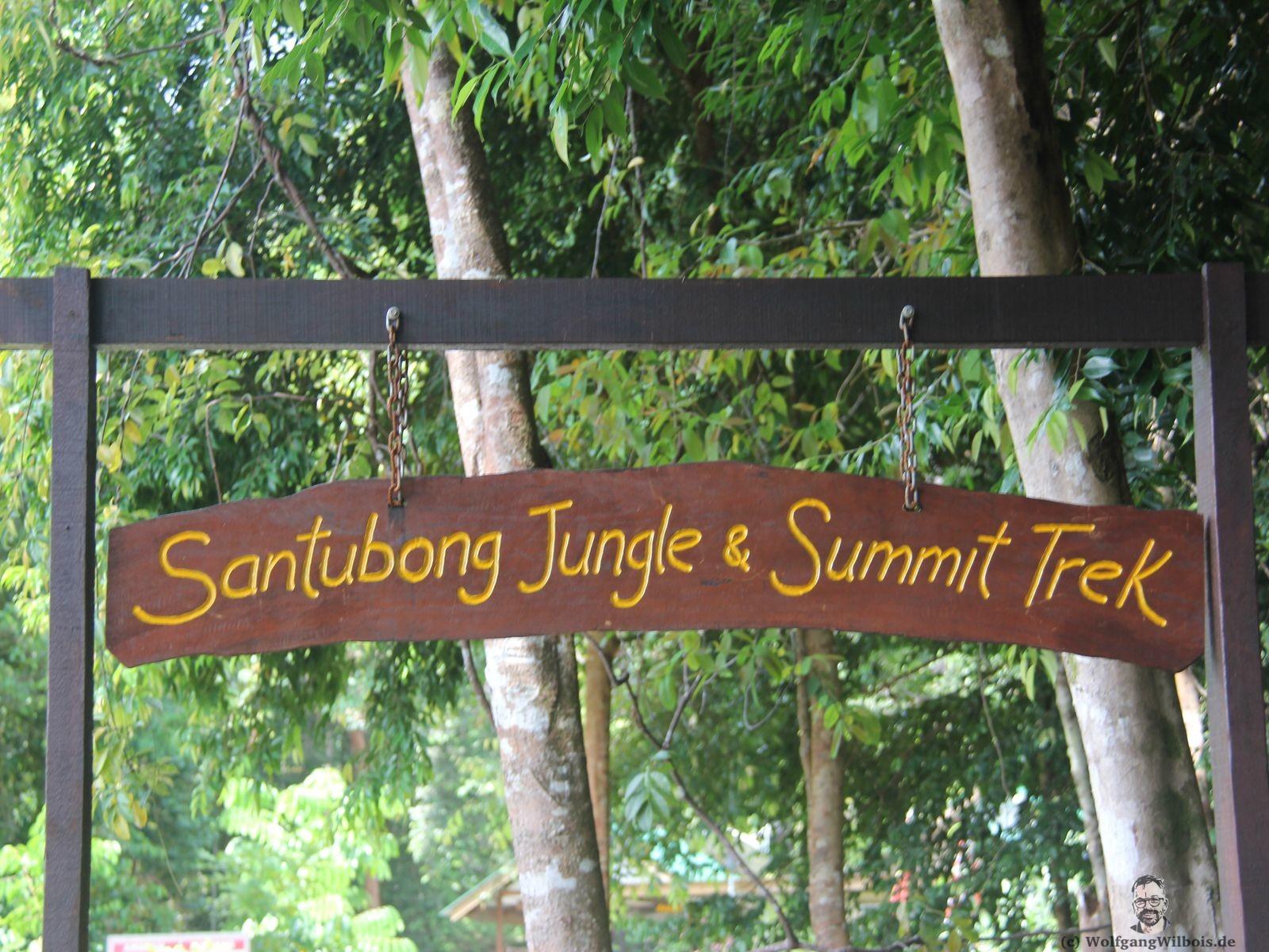 Backpacking Borneo Santubong Nationalpark Dschungeltreck