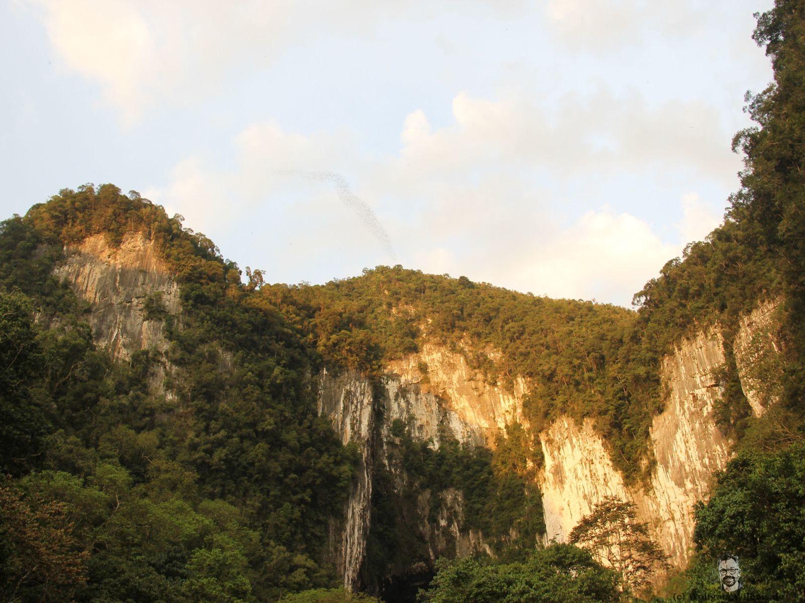 Borneo Tag 10 Hoehlen im Mulu Nationalpark